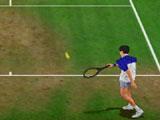 Grass Tennis Game Court